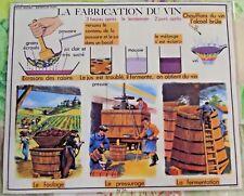 Affiche Poster objet de métier Viticulture Fabrication du Vin Grappe Raisins sud