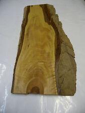 Walnussholz mit Rinde; 55x25x2cm; Artnr 152
