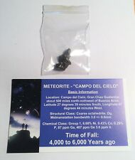 """RARE"" 1 x 2 to 5 Gram Meteorite ""Campo Del Cielo"" with Information Certificate"