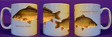 Mirror Carp mug  coarse fishing angling personalised