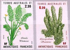 Taaf FSAT 1986 Maury 121-22 214-15 plantes plants Flora bärlappgewächs MNH