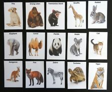 Picture Cards (Animals) - Dementia Activity  for Memory Matching pairs and Snap