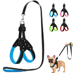 Step In Dog Strap Harness & Leash Reflective Adjustable for Walking Jack Russell