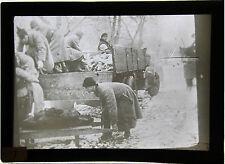 La Famine en Russie en 1921 Россия 14 plaques verre + 1 Livre de sensibilisation