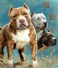 Signature Collection Dog Pitbulls Plush Raschel Korean Mink Blanket, Queen Size