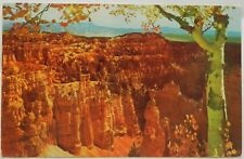 Bryce Canyon National Park, Utah 1953 postcard D720