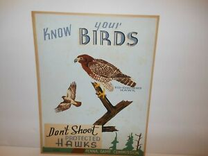 """Vintage PA GAME COMMISSION 1930 s  WPA """"KNOW YOUR BIRDS"""" ORIGINAL POSTER"""