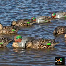 NEW ZINK AVIAN-X TOP FLIGHT GREEN WING TEAL FLOATER FLOATING DECOYS 6-PACK