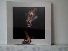 tiger in darkness 5D Lenticular  Holographic Stereoscopic Picture Wall Art