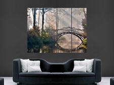 Sunshine a través de los árboles Bosque de puente de impresión de imágenes Arte Pared Poster Grande Enorme