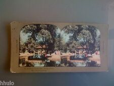STC350 Chicago Parc Lincoln couleurs STEREO Photography Stereoview