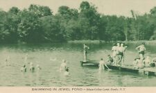 DANBY NY – Ithaca College Camp Swimming In Jewel Pond