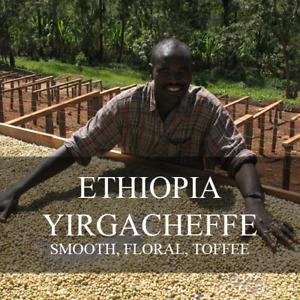10lbs. Ethiopian Yirgacheffe Misty Valley Natural Process Fresh Green Coffee Bns