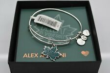 Rafaelian Silver Charm Bangle Bracelet Expandble Alex And Ani Beleaf In Yourself