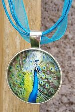 ♡ PEACOCK NECKLACE ♡ BIRTHDAY GIFT  for FRIEND SISTER MOM ♡ FEATHER BOHO BIRD ♡