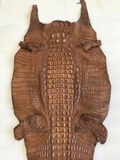 Nile Horn Back Crocodile Skin Brown