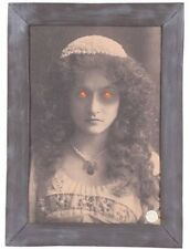 Spooky Animated Haunted Picture Frame Battery Operated Halloween Prop