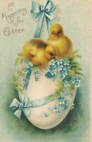EASTER - Chicks on Egg Tied With Ribbon