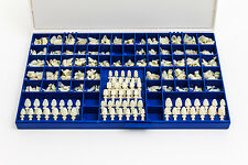 NEW POLYCARBONATE TEMPORARY DENTAL CROWNS BOX KIT 360 PCS W/ CROWN MOLD GUIDES