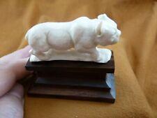 (LYNX-8) medium white Lynx cat Bobcat shed ANTLER figurine Bali detailed carving