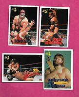 1990 CLASSIC WWF WRESTLING  CARD LOT  (INV# C2239)