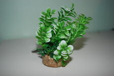 Aquarium Plant And Sandstone Base Complete With Airstone In Base 6 x 10 cms