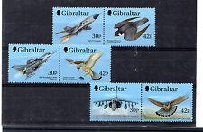 Gibraltat Aviones y Aves Rapaces año 1999 (BI-826)