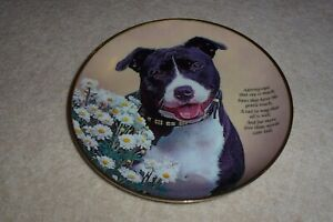 STAFFORDSHIRE BULL TERRIER PLATE ORIGINAL LIMITED EDITION WITH CERTIFICATE 11