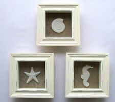 Starfish Home Wall Art Shadowbox Set Seashell Beach Ocean Decor 3 Picture Frame
