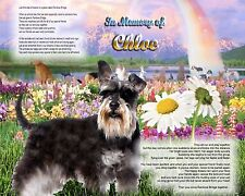 Schnauzer Memorial Picture-Rainbow Bridge Poem Personalized w/Pet's Name - Gift