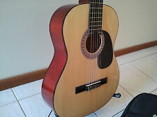 LIVINGSTONE ACOUSTIC GUITAR WITH CARRY CASE AND STAND