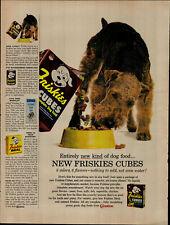 1958 Friskies Cubes Dog Food Welsh Terrier Vintage Print Ad 2763