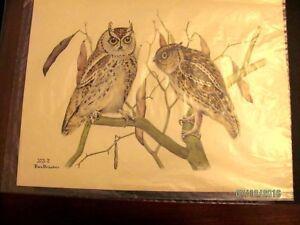 1930  Rex Brasher#373-2 Hand Colored Print#373XM2 DSS