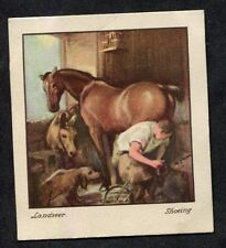 Godfrey Phillips - 1939 Old Masters No 24 Shoeing by Sir Edwin Landseer