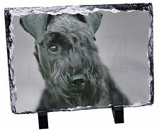 More details for kerry blue terrier dog photo slate christmas gift ornament, ad-kb1sl