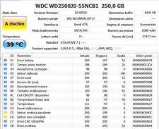 (SETTORI RIALLOCATI) 2 HARD DISK WESTERN DIGITAL WD2500JS 250GB SATA CAVIAR SE