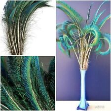 5pcs 30-35cm Natural Sword Peacock Feathers DIY Art Craft Millinery Smudge Fan