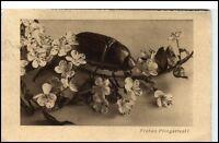 Glückwunsch AK 1934 Pfingsten Gruss mit Blumen Zweig und Maikäfer Käfer Motiv