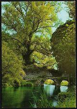 AA0695 Latina - Provincia - Giardino di Ninfa - Ponte medioevale