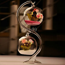 8cm Hanging Glass Flowers Plant Vase Stand Holder Terrarium Container IT