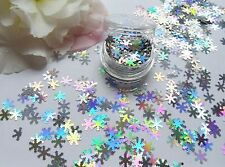 Arte en Uñas Brillo Holográfico * Plata Copos de nieve Decoraciones Brillo * Olla Spangle