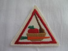 Girl Scouts Brownies Food Fun Apple Carrot Iron-on Patch Sash Vest Try It! NEW