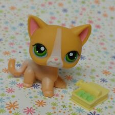 Littlest Pet Shop #72 yellow shorthair cat white stripe green eye fish accessory