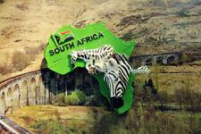 Südafrika Zebra Reiseandenken 3D Polyresin Kühlschrankmagnet Souvenir Magnet