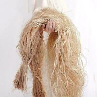 DIY Decor Natural Dried Raffia Fibre Bulk Weaving Gift P9J5 X9Y0 Box A0V4 J4B9