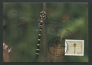 GERMANY MK 1991 DRAGONFLIES LIBELLULES LIBELLEN CARTE MAXIMUM CARD MC CM /m73