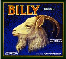 Monrovia Los Angeles Billy Goat Orange Citrus Fruit Crate Label Art Print