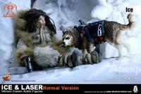 Hot Toys Apexplorers - Ice & Laser Figure Normal Ver. 1/6 Figure