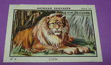 RARE CHROMO 1933 JOSEPH-MILLIAT ANIMAUX SAUVAGES LION