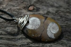 Double Ammonite Goniatite Silver Wire Wrapped Fossil Necklace 471 Mill Yrs Old